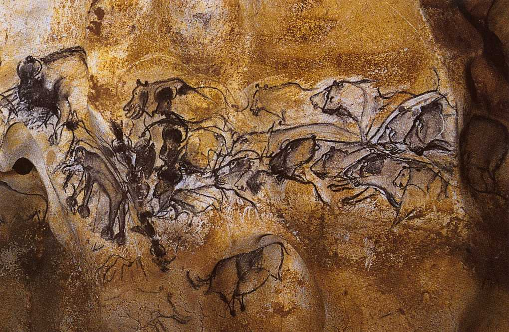 Chauvet cave panel paintings social network